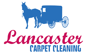 google logoLancaster Carpet Cleaning